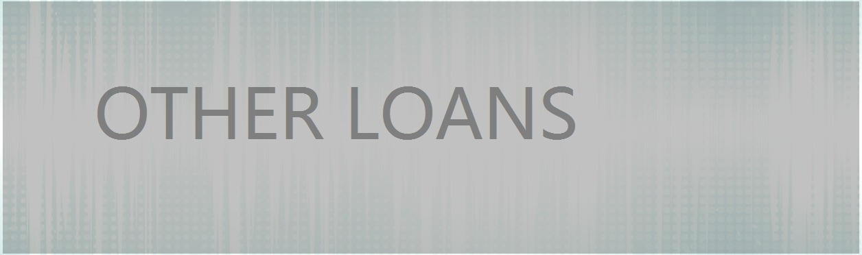5 other loans 5